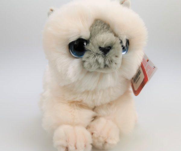 Katt, Hvit – Keel Toys