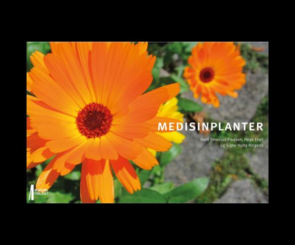 Medisinplanter